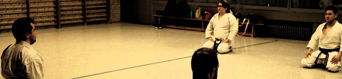Takudai Shotokan Karate Dojo